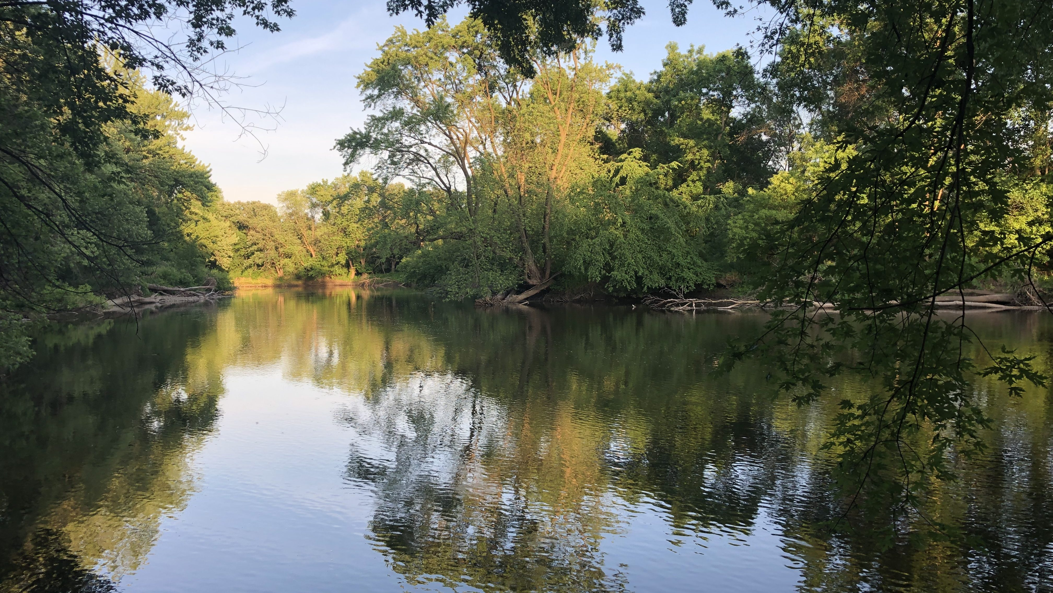 Photo of the Cannon River with reflective trees over the water